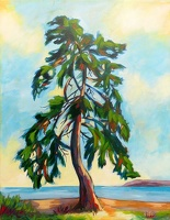 A Tree with a View - SOLD